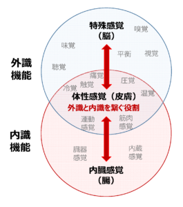 引用:http://bbs.kyoudoutai.net/blog/2020/03/7135.html